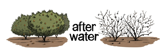 After Water