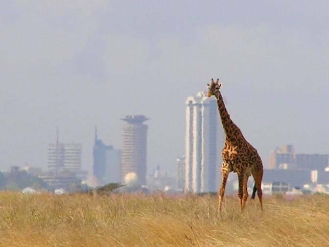 Kenya: Community Land Bill 2015 Is Defective